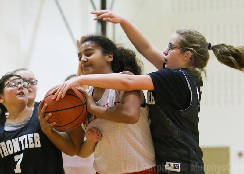 SNMS Girls Basketball 2018-2019
