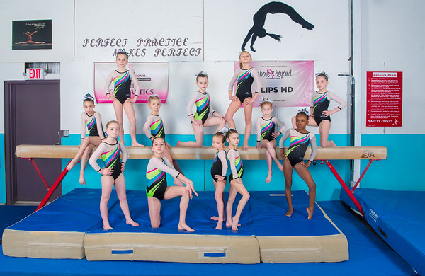 Flips Team Photo Level 3