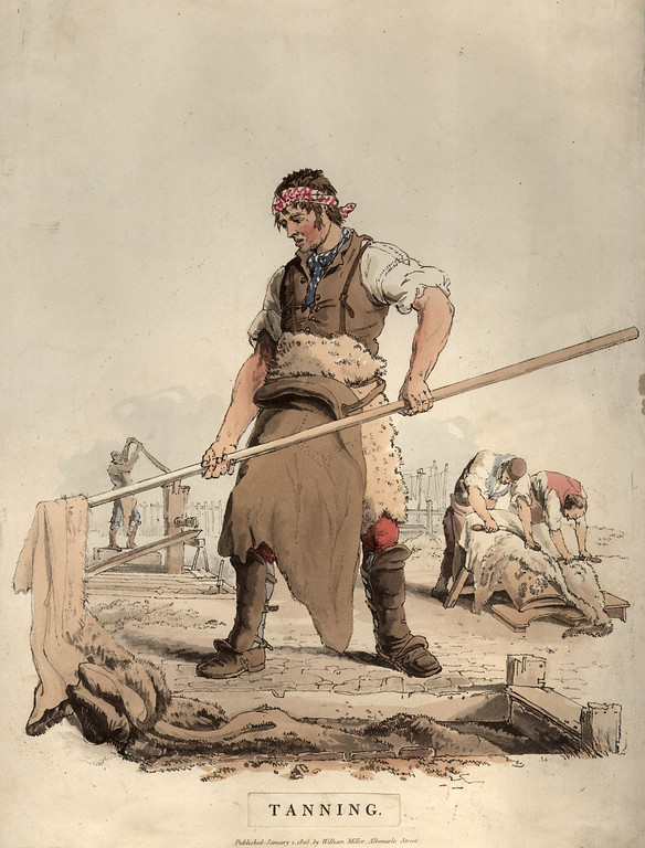 . circa 1805:  A workman tanning hides for the leather industry.  (Photo by Hulton Archive/Getty Images)