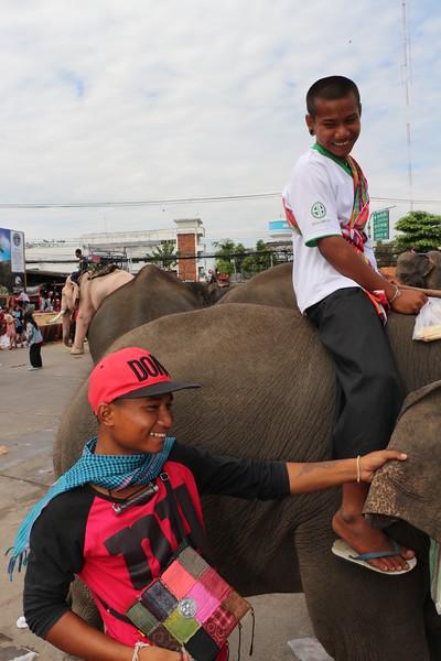2014-11-14 Surin Elephant Welcome Feast 848.JPG