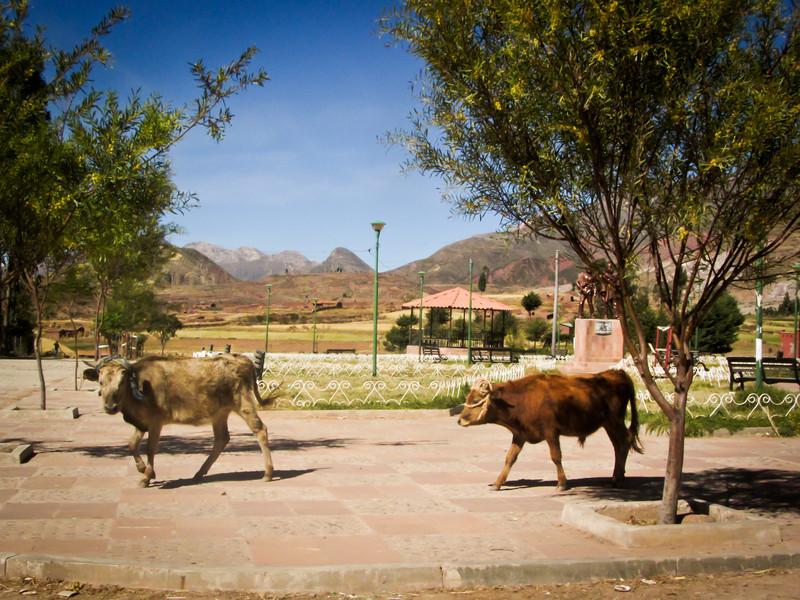 Sucre 201205 Inca Trail Potolo Tour (52l).jpg
