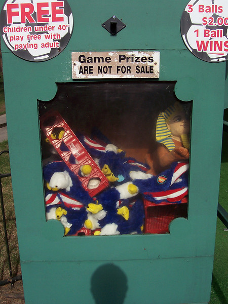 I started a small project to take photos of Canobie's plush games prizes.