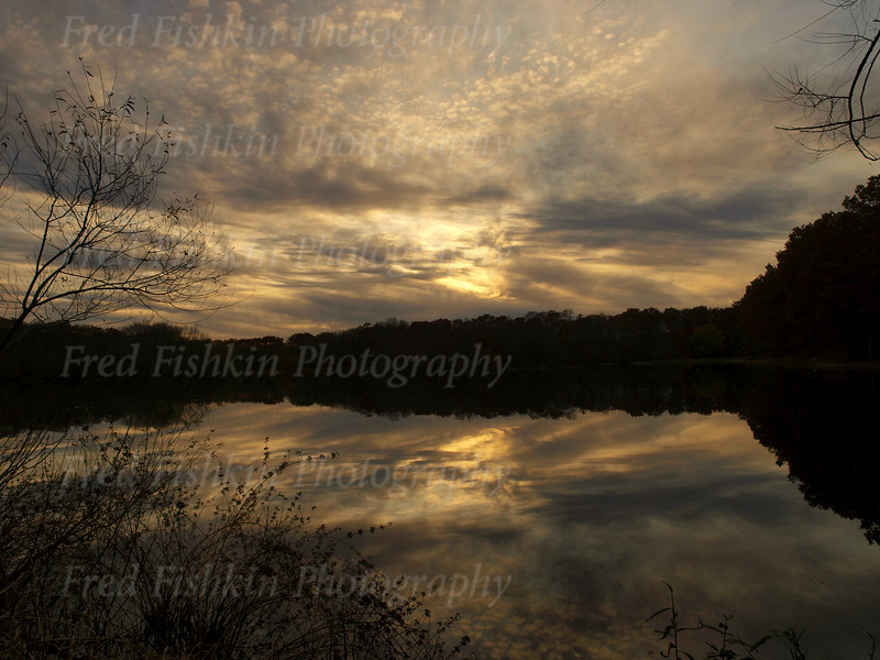 turkey swamp clouds.jpg