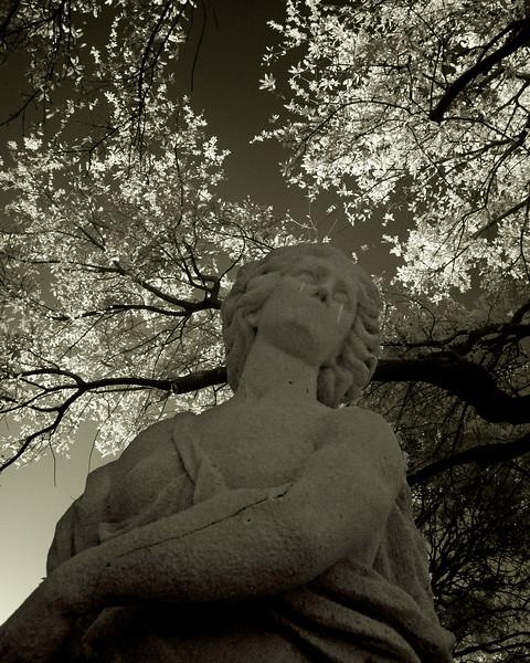 Statue1IR.jpg