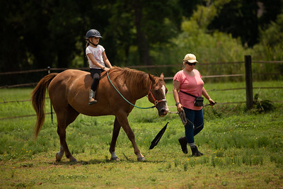 Seabreeze Horse Connection
