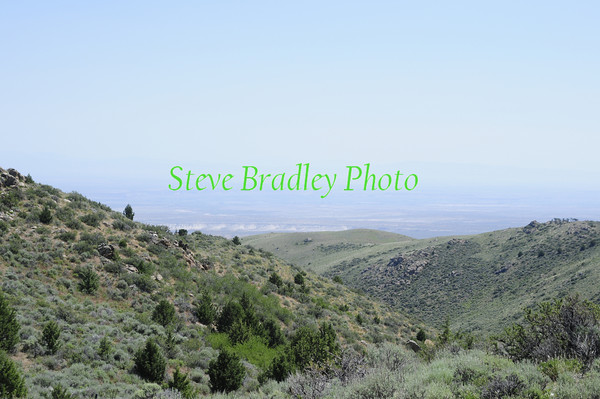 Bennett Hills (Almosta) D1