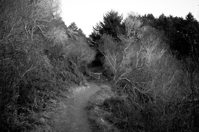 WinterAdventure2011-12-1513.jpg