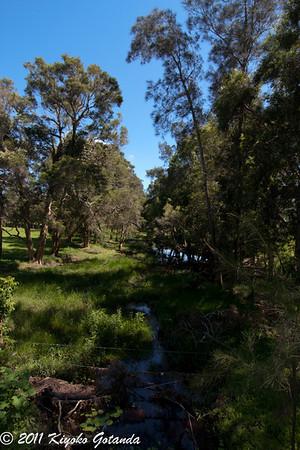 Buchanans Creek