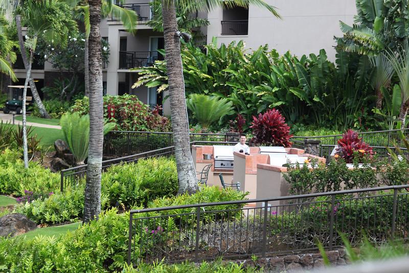 Kauai_D5_AM 011.jpg