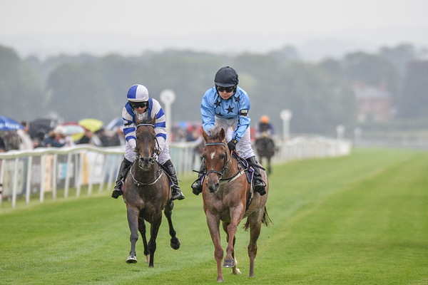 Charles Owen Pony Race (138cm & Under)