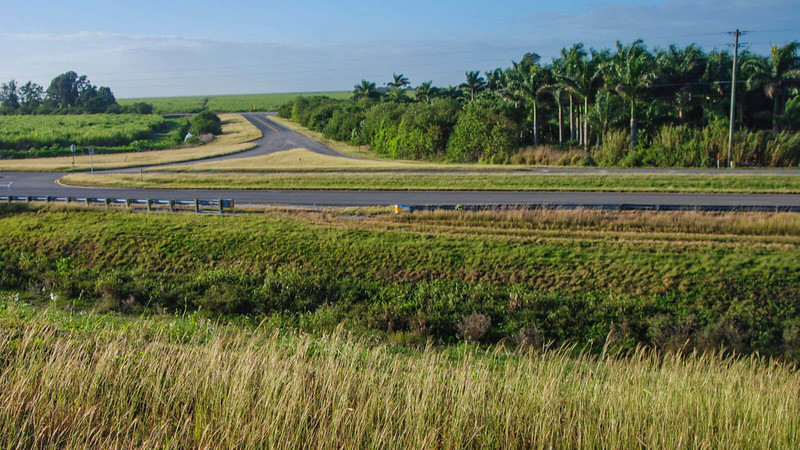 Road into cane fields south of Clewiston