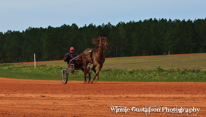 2012 Standardbred Training at Southern Oaks