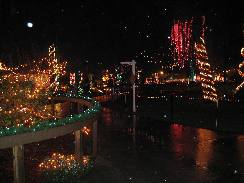 Seeing the Christmas Lights show at Warm Beach (Dec. '08)