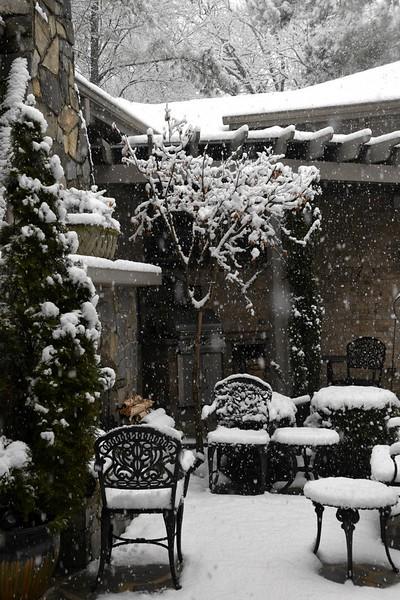 snow_o1_2018_004.jpg