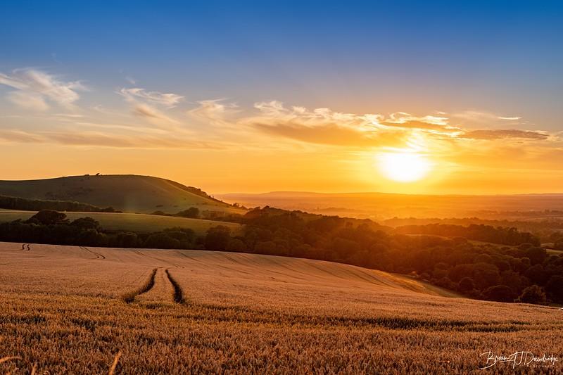 SDW_Sunset_D850-0309.jpg