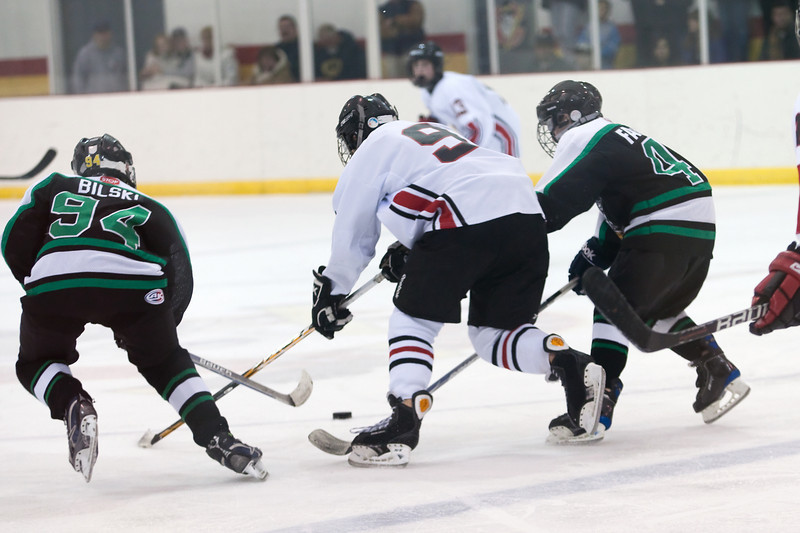 jake_hockey_022011_0020.jpg