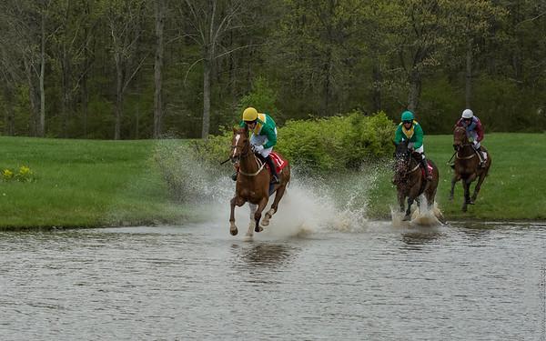 Virginia Gold Cup Races 2014