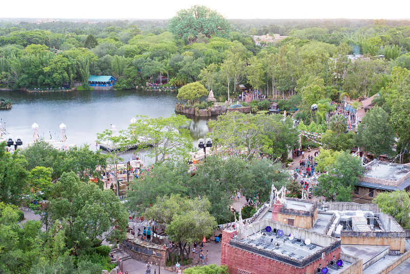 View from the Top of Expedition Everest - Disney's Animal Kingdom, Walt Disney World