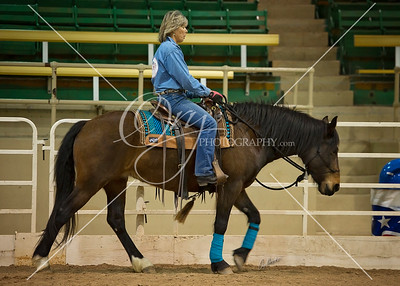 2015 Rocky Mountain Horse Expo