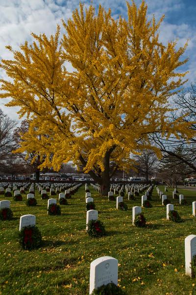 2015 Wreaths Across America, Arlington National Cemetery
