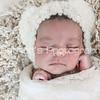 Zara's Newborn Gallery_078