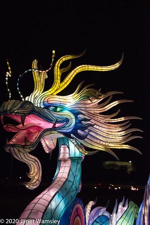 2020-01-26 Reach Chinese Lanterns