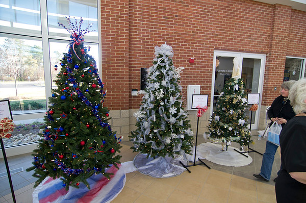 12/3/2011  Hospice Festival of Trees
