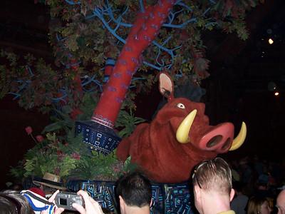 Walt Disney World- Animal Kingdom