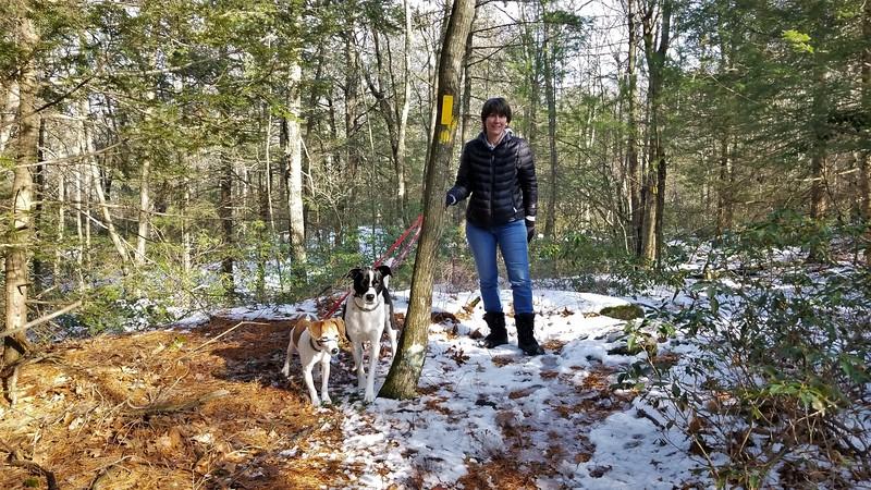 2018-01-21 Canton Land Trust Hike V(18) Biscuit Mesa Dog Mom Sandy