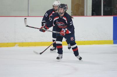2015.12.19 MHS Girls JV Hockey vs Auburn