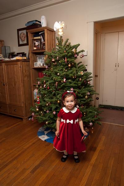 Prentice Family Christmas Portrait