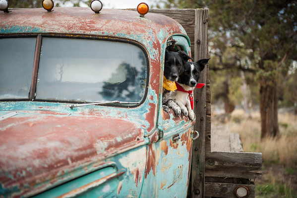 Rusty Ol' Truck
