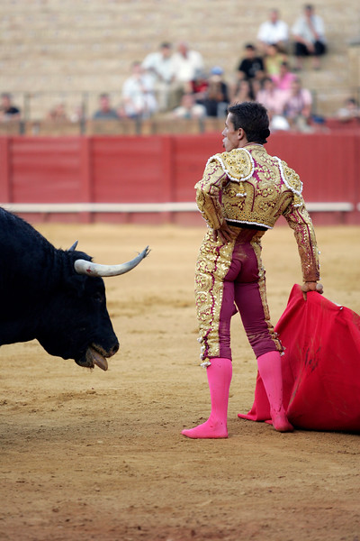 The Spanish bullfighter Anibal Ruiz, barefoot after being caught by the bull.  Bullfight at Real Maestranza bullring, Seville, Spain, 15 August 2006.