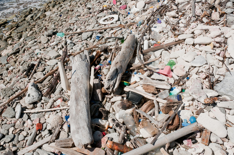 Litter scattered on the beach of Bonaire