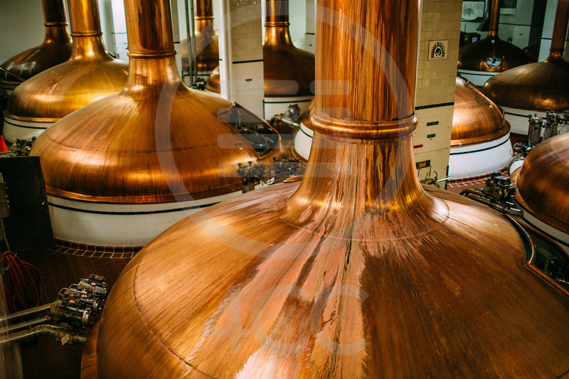 coors_brewery_tour-7456.jpg