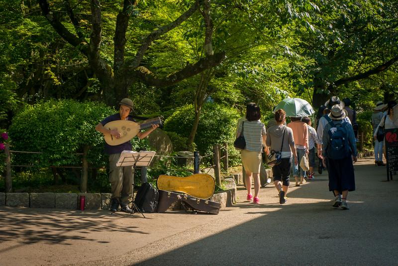 The pretty Path of Philosophy in Northern Higashiyama