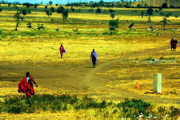Journey Through Tanzania