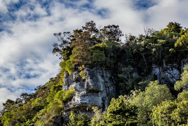 Beliebter Kletterfelsen im «Paynes Ford Scenic Reserve»