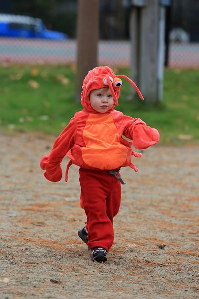 Wyatt's First Halloween 129.jpg
