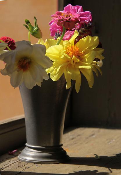 Good Light For Flowers