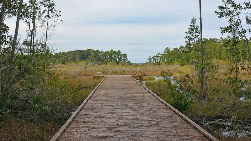 Lake Lizzie Marsh Loop