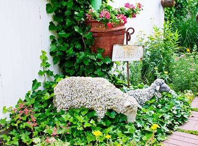 Garden and Yard