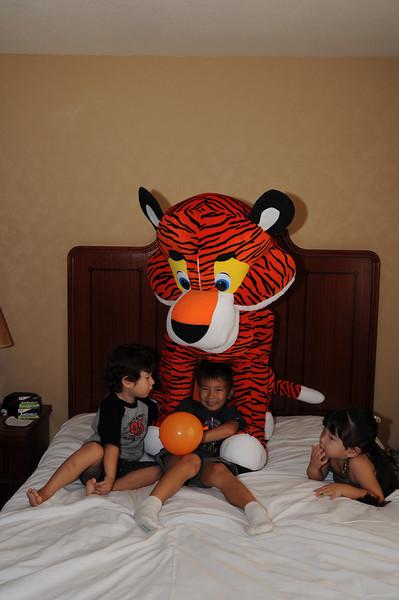 07-15-2010 Tiger Fire