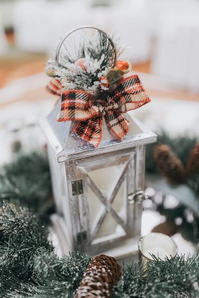 Nicole_Jason_Wedding_Holiday_Inn_Elgin_Illinois_December_30_2018-3.jpg