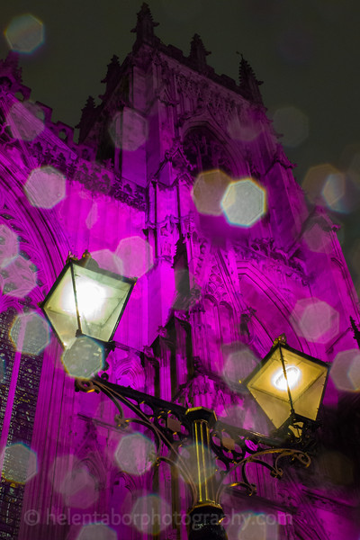 York autumn and lights-16.jpg