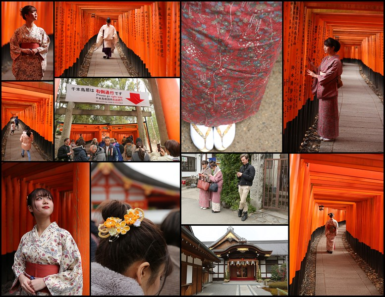 Day 8, Jan 12th Sun.: Kyoto -Sapporo,Hokkaido