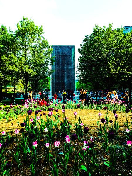 Garden with Crown Fountain. Millennium Park, Chicago