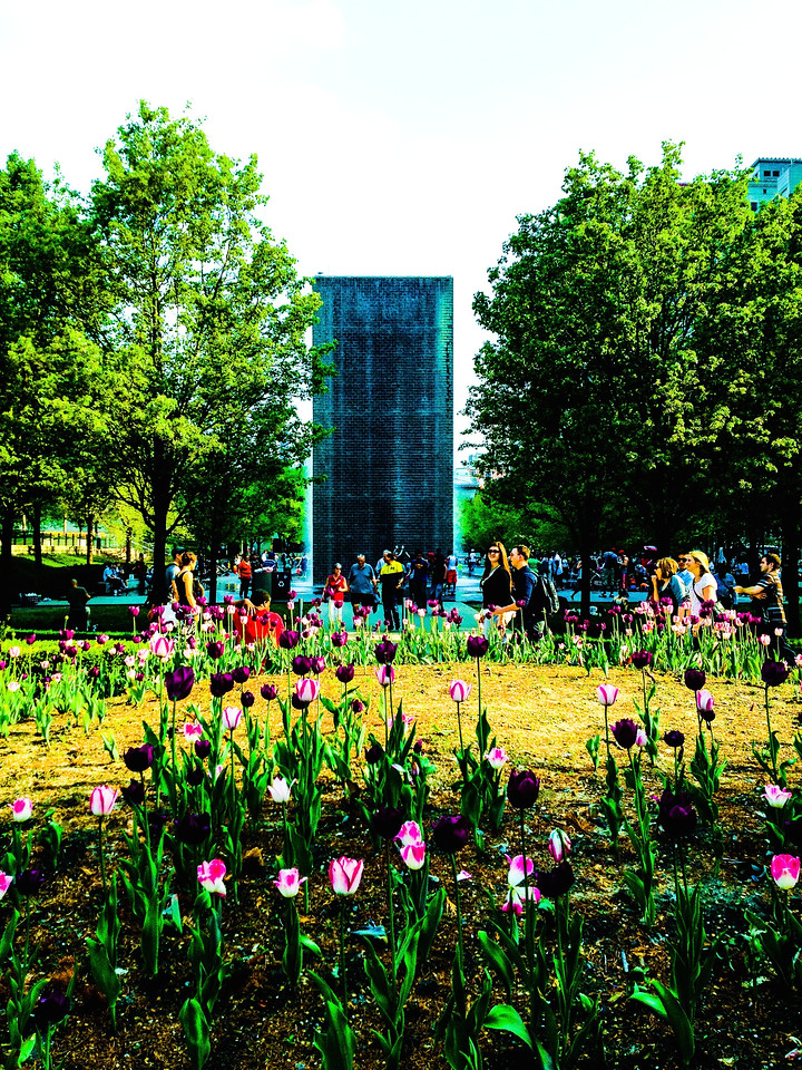 Garden with Crown Fountain. Millennium Park, Chicago