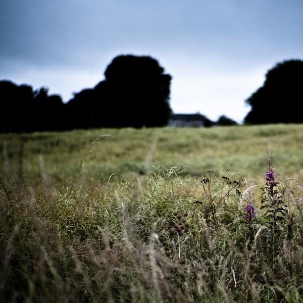 Low Buston medieval village (dispossessed), Warkworth, Northumberland UK