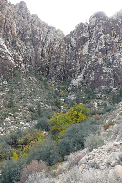 Ice Box Canyon Trail. Red Rock Canyon